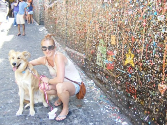 Seattle gum wall with Mickey the dog